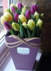 Тюльпаны к 8 Марта 2018 оптом